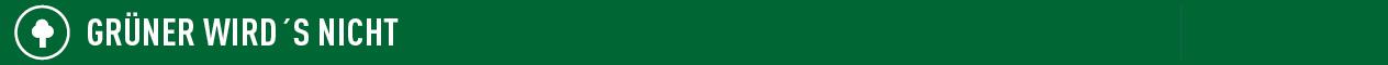 Grafik zeigt weißen Schriftzug Grüner wird's nicht auf grünem Hintergrund Quelle: Dialog public relations