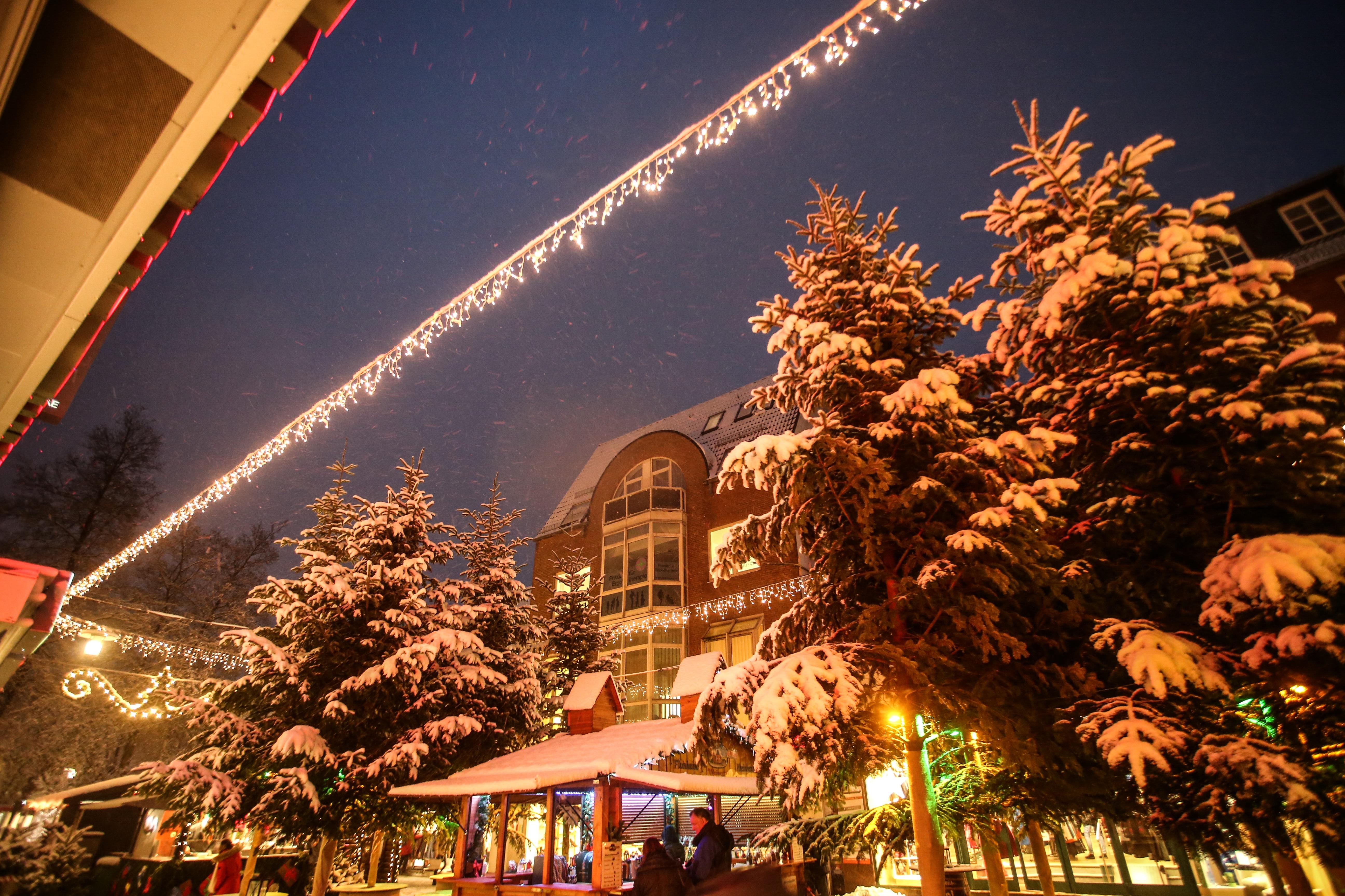 Mit Schnee bedeckte Tannen und Menschen auf dem Weihnachtsmarkt.