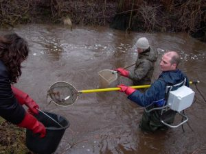 Elektro-Befischung durch zwei Männer
