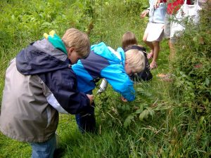 Kinder sammeln etwas im Wald