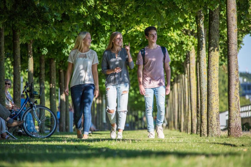 3 junge Menschen laufen durch eine Baumallee