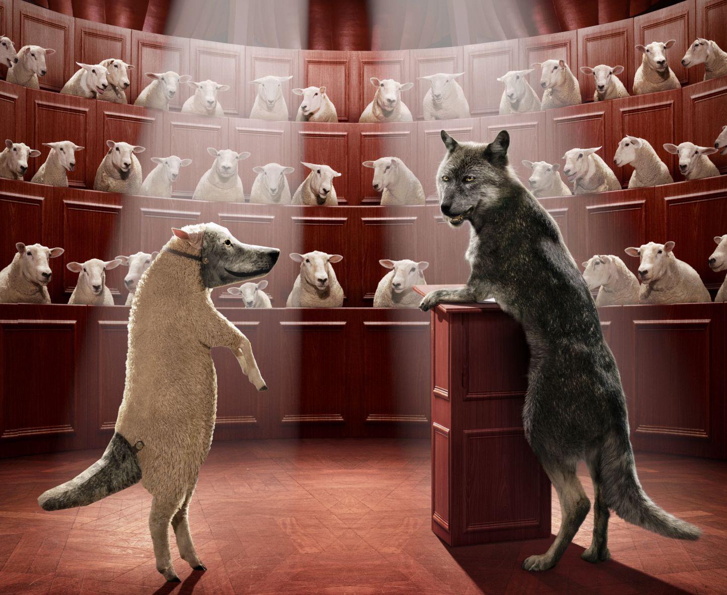 Verschoben auf 2021   Das Schaf im Wolfspelz   RAW Spezial
